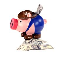 Piggy Bank And Cash Stock Image