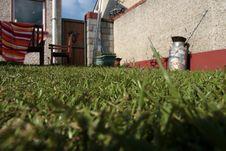 Free Grass In The Backyard Garden Stock Photo - 5725090
