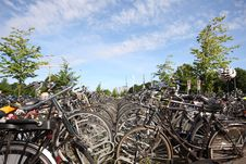 Free Bikes In The Hague Royalty Free Stock Photos - 5726668