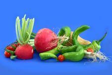 Garden Radish Stock Image
