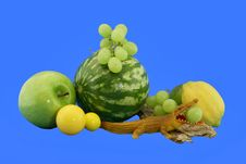 Free The Crocodile And Grapes Stock Image - 5726961