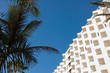 Free Hotel & Palm Royalty Free Stock Photo - 5728285
