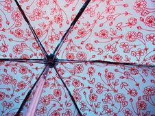 Behind A Wet Umbrella Royalty Free Stock Image