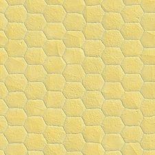 Free Snake Skin Stock Image - 5728571