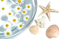 Free Homeopathic Bathing Medicine Royalty Free Stock Photography - 5728997