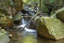 Mountain Stream With Waterfall And Fallen Branches Royalty Free Stock Photos