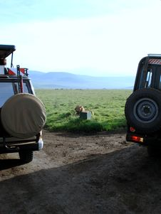 Free Lion And Jeep Stock Photo - 5729900