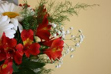 Free Flower Bouquet Royalty Free Stock Photo - 57291895