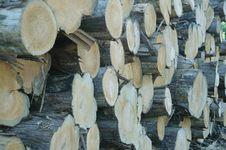 Wood Stock Royalty Free Stock Photos