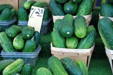 Cucumbers Galore Royalty Free Stock Photo