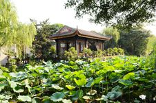 Free The Summer House In A Garden Royalty Free Stock Photo - 5732445