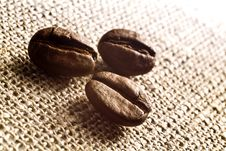 Free Coffee Grains Stock Image - 5733941