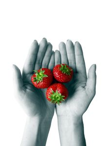Free Strawberries At Hands Royalty Free Stock Image - 5735416