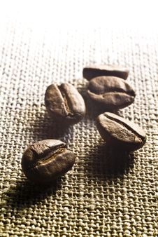 Free Coffee Grains Stock Image - 5735621