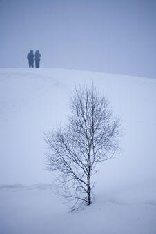 Free Winter Snow Stock Photos - 5737763