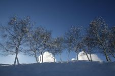 Free Winter Snow Stock Images - 5738024