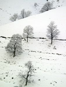 Free Winter Snow Stock Images - 5738064