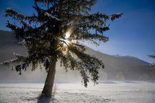 Free Winter Snow Stock Photo - 5738090