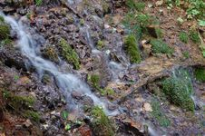 Free Wood Stream Royalty Free Stock Photos - 5738128