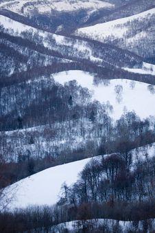 Free Winter Snow Stock Photos - 5738513