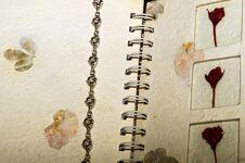 Free Silver Bracelet Stock Photo - 57349610