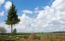 Free Rural Landscape Stock Image - 5740901