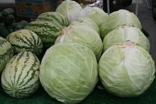 Free Cabbage And Melons Stock Photos - 5742003