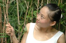 Chinese Girl With Bamboo Trees Royalty Free Stock Photos