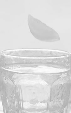 Free Glass Of Water Background Stock Photography - 5744152