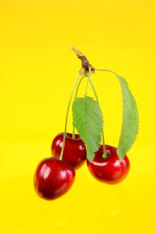 Free Three Cherries With Leafs. Stock Photography - 5744472