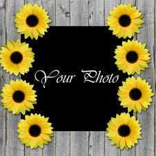 Free Frame For Photo With Sunflowers Stock Photos - 5747003