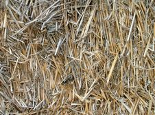 Free Close Up Of Straw Bales Stock Image - 5748491