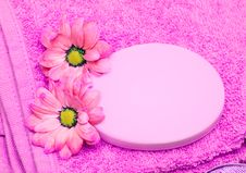 Free Spa Essentials Royalty Free Stock Image - 5748516