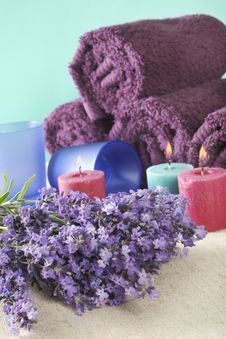 Free Bunch Of Lavender Stock Image - 5751651
