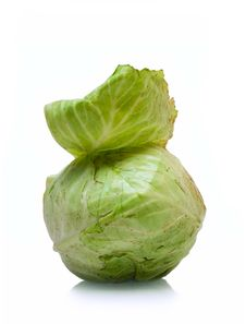 Free Cabbage Isolated On White Stock Image - 5751671