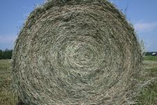 Free Rolled Bale Of Hay Royalty Free Stock Photography - 5751687