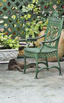 Free Cat With Green Chair Stock Image - 5751941