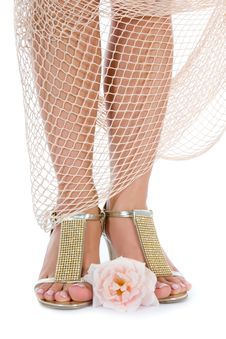 Free Long Legs On High Heels Stock Photography - 5753572