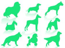 Free Dogs Breeds Silhouette Royalty Free Stock Photography - 5754697