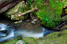 Free Rushing Creek Stock Photography - 5756152