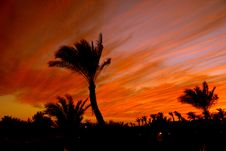 Free The Egyptian Sunset Royalty Free Stock Photo - 5756365