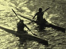Free Rowers Royalty Free Stock Image - 5757936