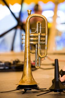 Free Trumpet Royalty Free Stock Photos - 5758458