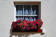 Free Window With Flowers Stock Images - 5758644