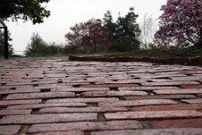 Free Brick Walkway Stock Photos - 5758743
