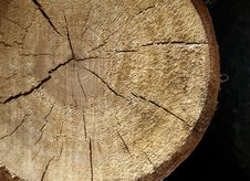 Log Cut Royalty Free Stock Image