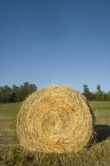 Free Hay Bale Roll Blue Sky Royalty Free Stock Photos - 5759778