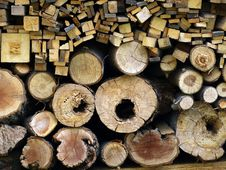 Free Logs Cut Stock Photo - 5759800