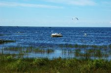 Free View Of The Lake Lache In North Russia Royalty Free Stock Photos - 5759918
