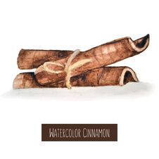 Watercolor Hand Drawn Cinnamon Illustration Royalty Free Stock Image